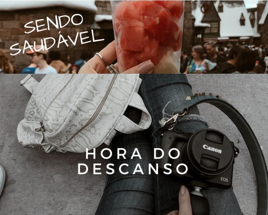 TUDO SOBRE OS PARQUES DA DISNEY (2)